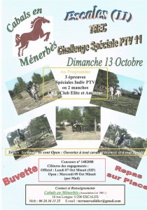 affiche speciale PTV