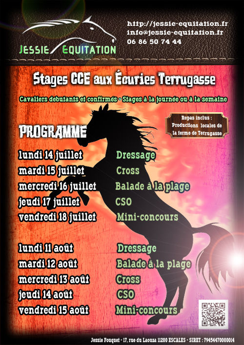 programme stages CCE
